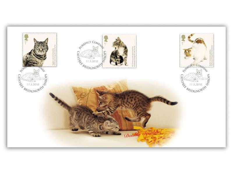 150th Anniversary of Battersea Dogs & Cats Home - A Tribute to Cats