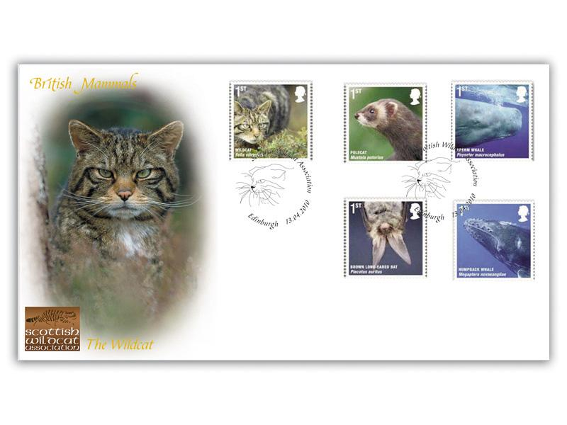 British Mammals - Scottish Wildcat Association
