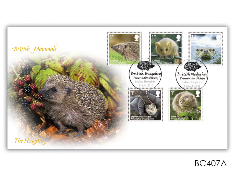 British Mammals - The British Hedgehog Preservation Society