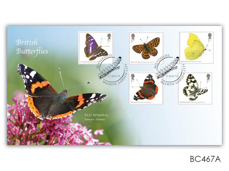 Butterflies - The Red Admiral
