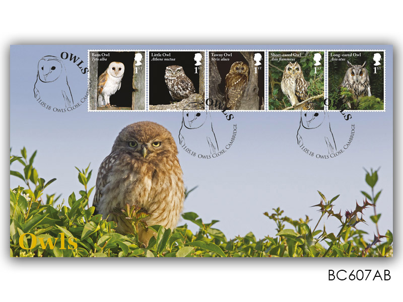 Celebrating British Owls - Little Owl with Adult Owl Stamps Alternative Cover